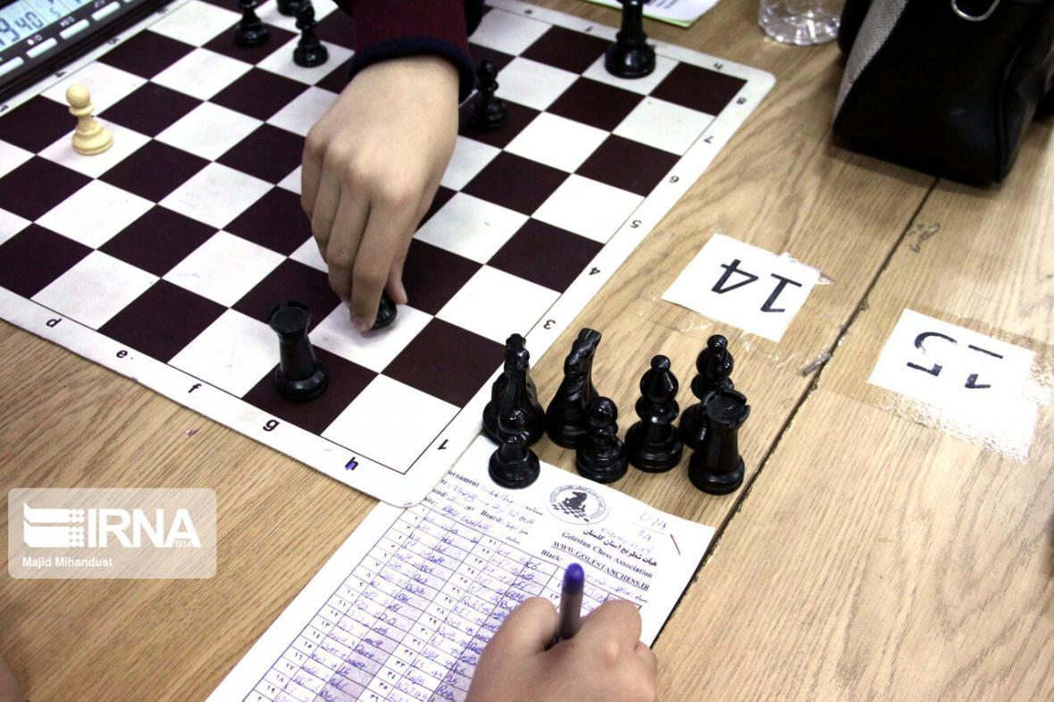 خبرنگاران مقصودلو قهرمان شطرنج آنلاین شد