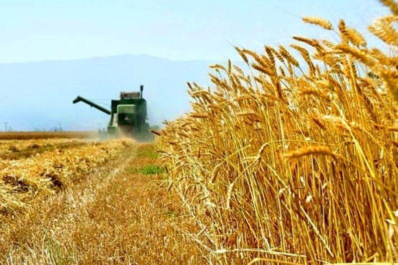 رشد مالی 1.7 درصدی بخش کشاورزی