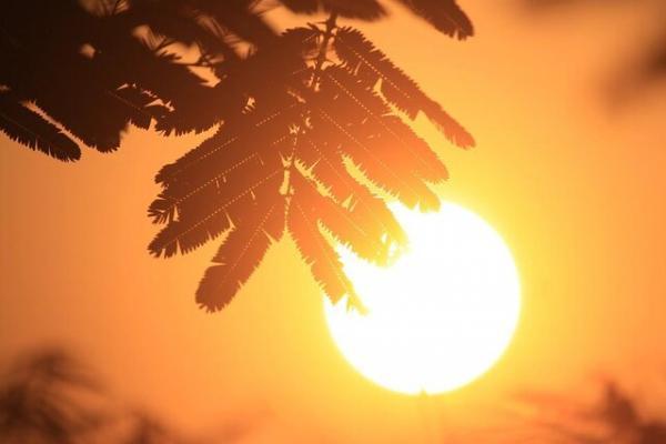 پیش بینی افزایش دما و غبار برای خوزستان